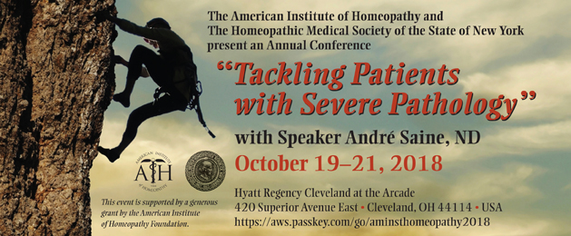 2018 AIH Seminar: Tackling Patients with Severe Pathology